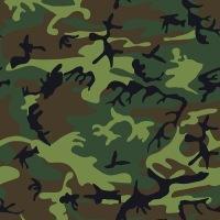 Как включается армия в пенсионный стаж